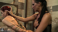 Mandy's strict rules should be followed and only then Lucy will get freedom