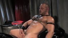 Hunky bear is eager to sound his own humongous piece of man meat