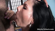 Cute, lovable couzie goes mad from the form and taste of this cock