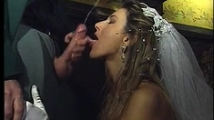 Brunette Milf Parties With Two Bisexual Guys