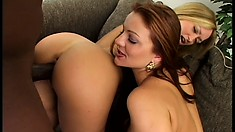 Gorgeous redhead and striking blonde get together on the couch with a black stud